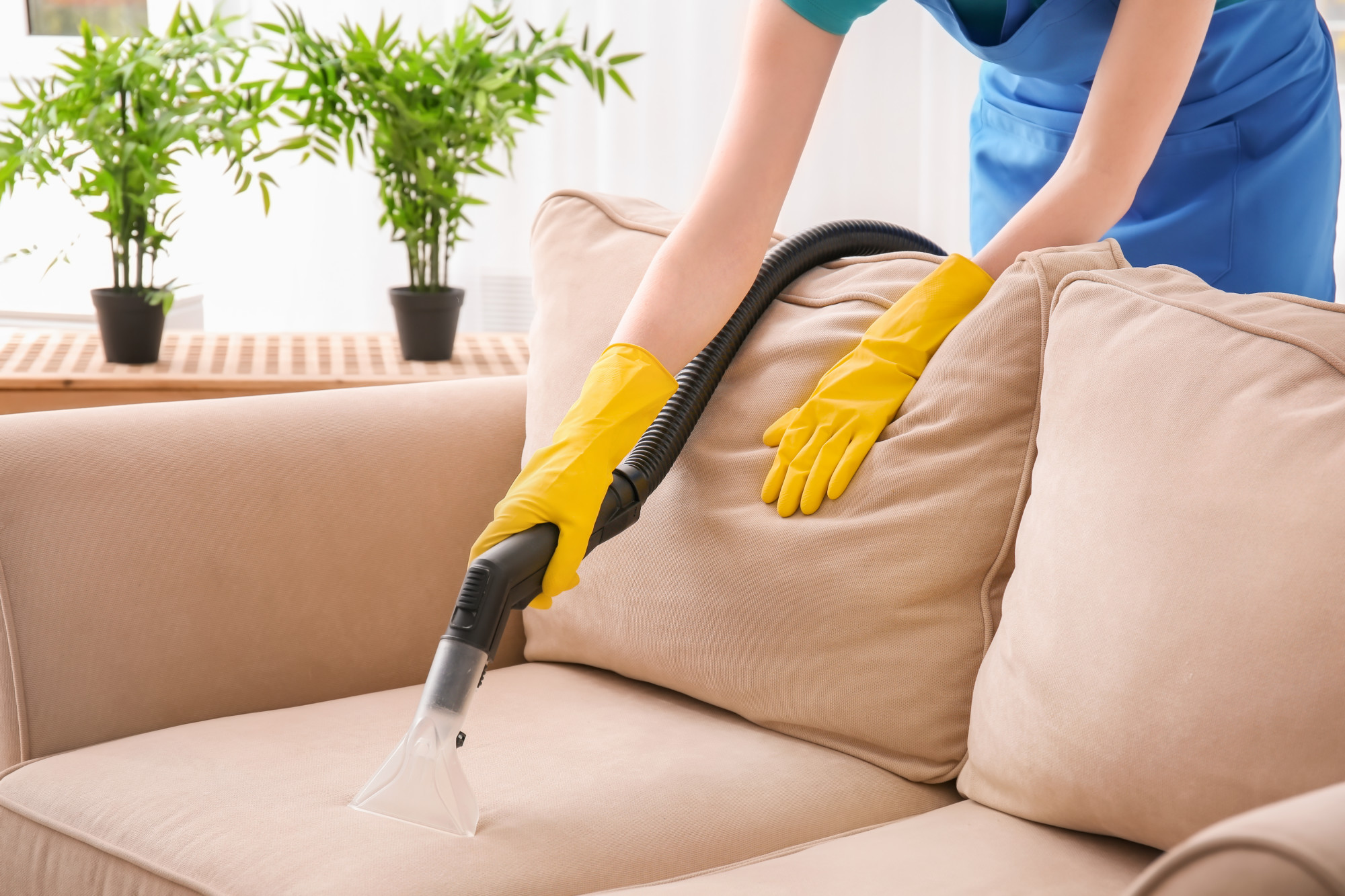 how to deep clean a couch